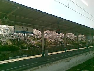 20090411(001).jpg