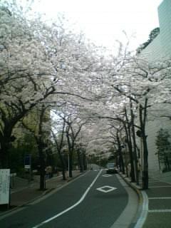 東京に寄り道
