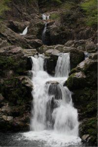新緑の西中国山地~三段峡